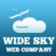 Wide Sky Web Company Profile Pic